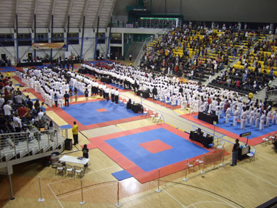 Competitors at the opening ceremony