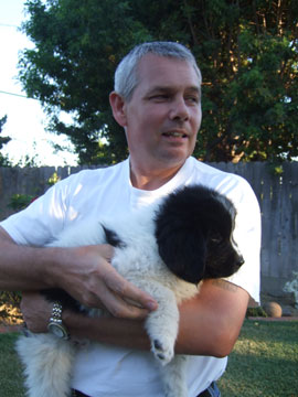 The Landseer, Newfoundland pup that we selected, a male.