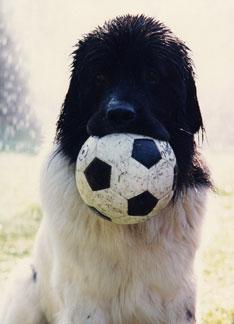 Game ball!!!
